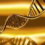 3 Motive pentru care ADN-ul tau este cea mai importanta RESURSA spirituala